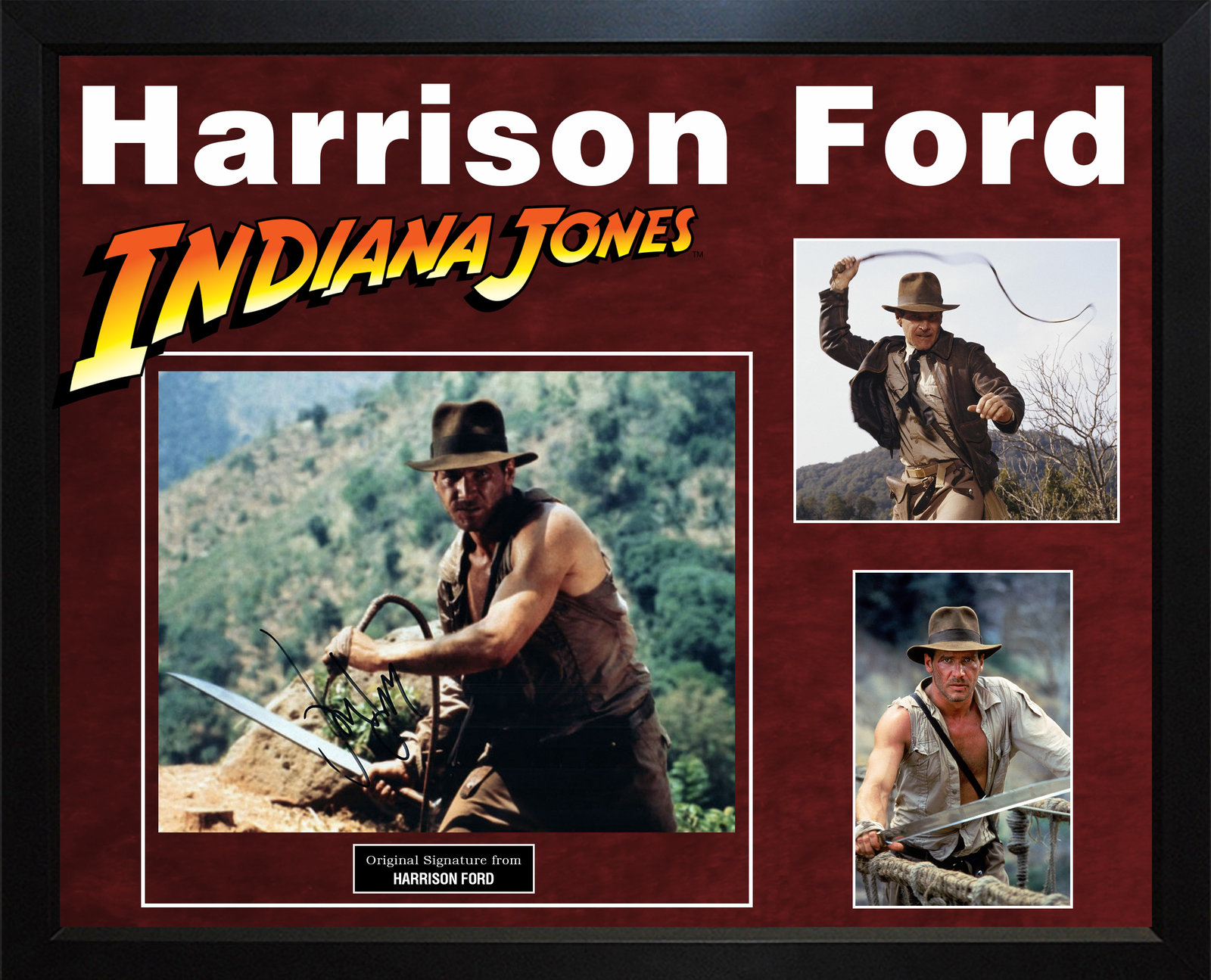 Harrison Ford Autographed Indiana Jones 11x14 Photo In Custom Framed Display AFT