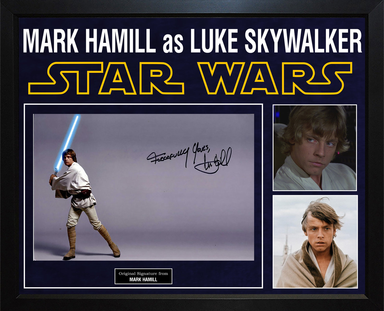 Mark Hamill Autographed Star Wars Luke Skywalker Photo In Custom Framed Display